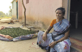Sitzende Inderin im Sari
