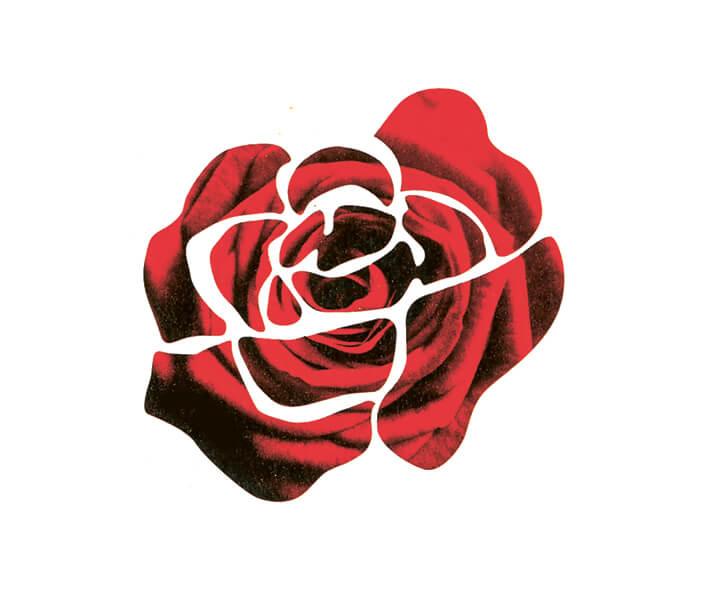 """Action """"Journée des roses équitables"""""""