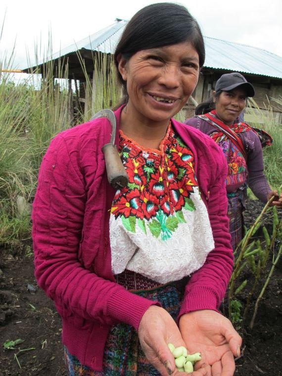 Kleinbauern in Guatamala. Unterstützen Sie Saatgutmärkte und Agroökologische Landwirtschaft.
