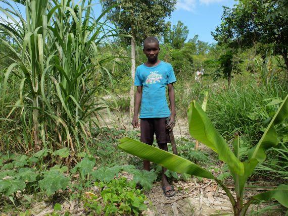Die Lebensbedingungen im Bassin-Bleu in Haiti sind hart. Agrarökologische Anbaumethoden erwecken kargen Boden zu neuem Leben.
