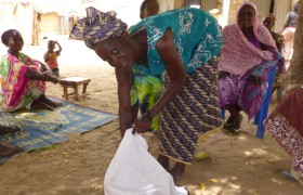 Senegal SAPPAT