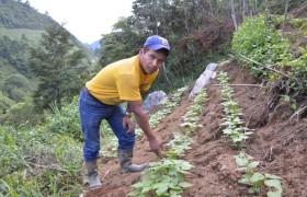 Guatemala,  Purulha Comunidad Repollal, Departement Baja Verapaz
